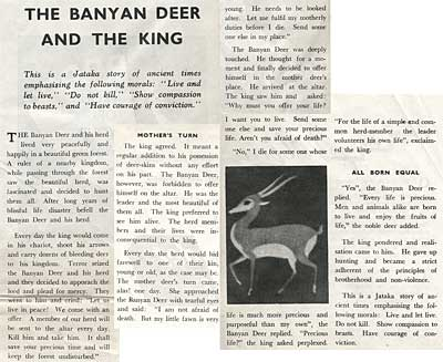 Clair Weeks In India The Banyan Deer