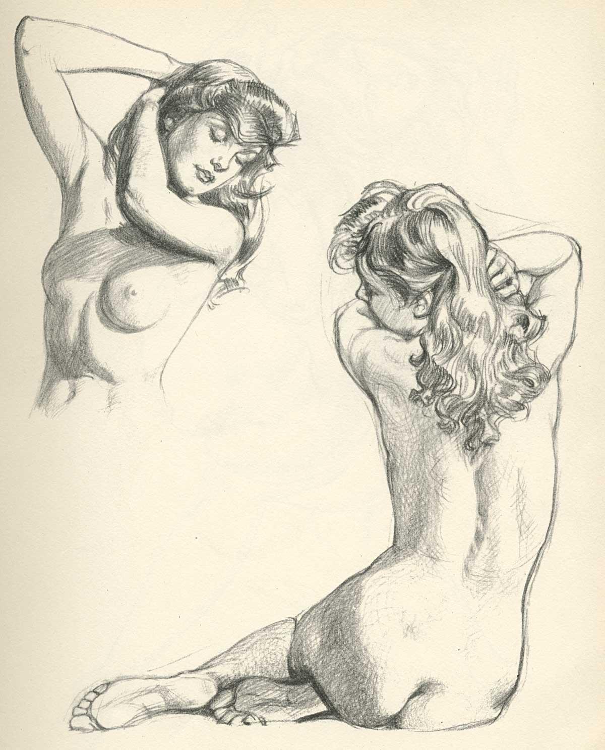 Erotic Drawings Big Top Bondage
