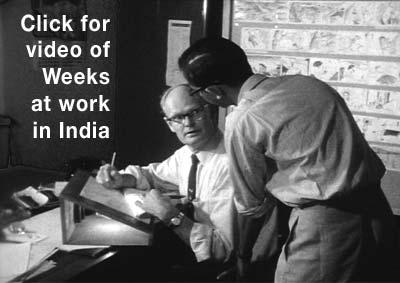 Clair Weeks In India